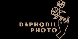 Daphodil Photo